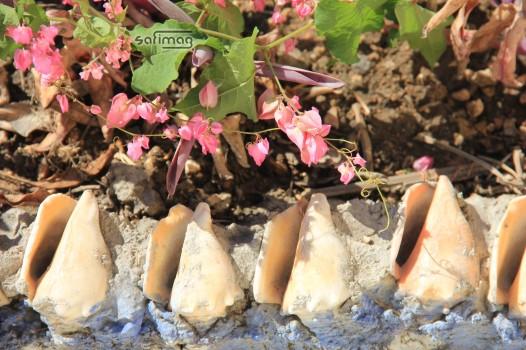 Coquillages ornant le bas de l'oeuvre de Lionel Saint-Éloi au Grand Cimetière de Port-au-Prince